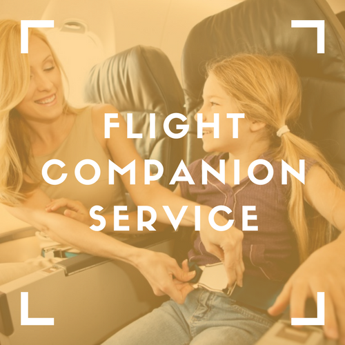 Flight Companion